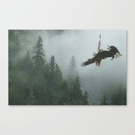 Battle for the Cedars - Bald Eagles Wildlife Scene Canvas Print