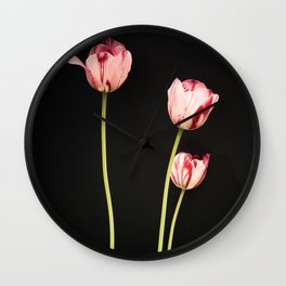 Old-Master style pink tulip stems on black Botanical photograph print Wall Clock