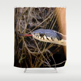 Watercolor Reptile Black-necked Garter Snake 02, Ventana Canyon, Arizona Shower Curtain