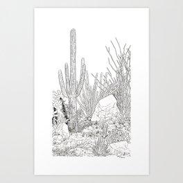 Sonora Art Print