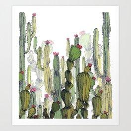 Realistic cactus field Art Print