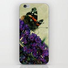 The Admiral iPhone & iPod Skin