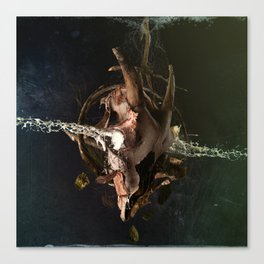 Withered II - alignment Canvas Print