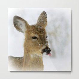 CATCHING SNOWFLAKES  Metal Print