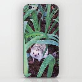 Juni Hedgehog Adventure in Plants iPhone Skin