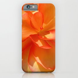 Persian Buttercup iPhone Case