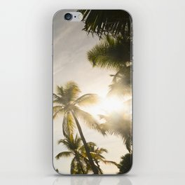 Palm Trees. iPhone Skin