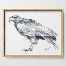 Hawk, Study in Blue and Black Serving Tray