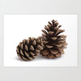 Two pinecones Art Print