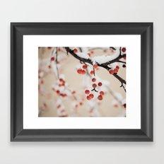 Winterberry Framed Art Print