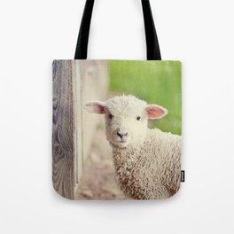 Little Lamb I Tote Bag