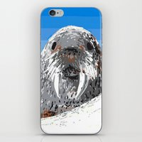 walrus iPhone & iPod Skins featuring Walrus by wingnang