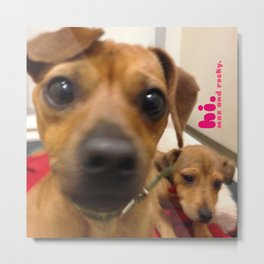 MAX and ROCKY (shelter pups) Metal Print