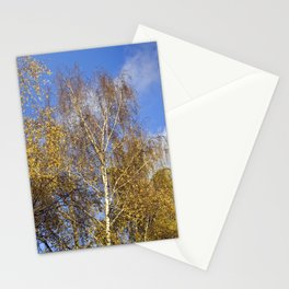 Birch in the Autumn-Light Stationery Cards