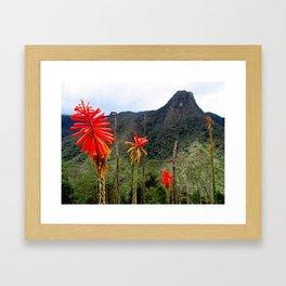 Colombia Framed Art Print