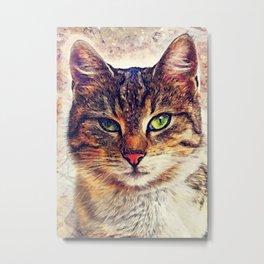 Cat Saba Metal Print