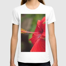 Close up of a Red Hibiscus T-shirt