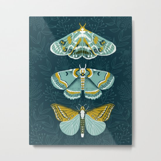 Lepidoptery No. 8 by Andrea Lauren  Metal Print