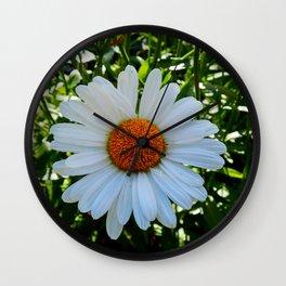 Single White Daisy Wall Clock