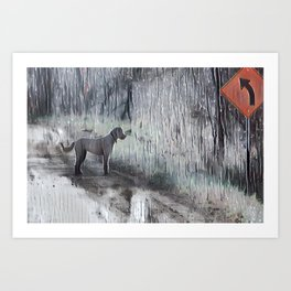 Which Way Dog in Rain Art Print