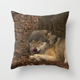 Sleepy Grey Wolf Throw Pillow