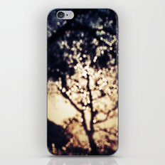 Glistening Tree iPhone & iPod Skin