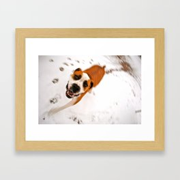 snow day for buster brown Framed Art Print