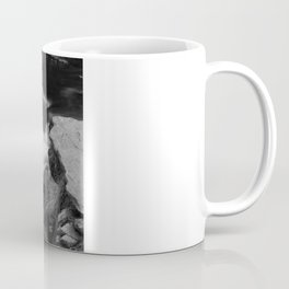 Dreamy falls Coffee Mug