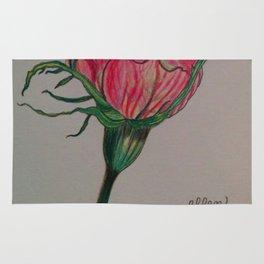 rose, botanical, botanical art, pink, pink rose, Yokohama Rug