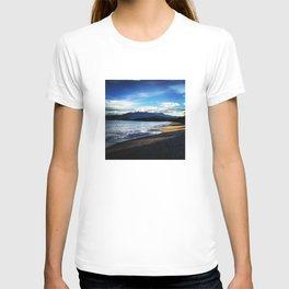 What Winter? T-shirt