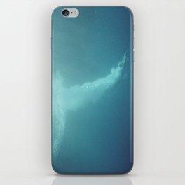 Carribean diver iPhone Skin