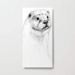 European otter pencil sketch (c) 2017 Metal Print