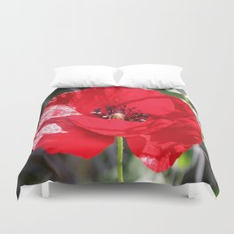 Single Red Poppy Flower  Duvet Cover