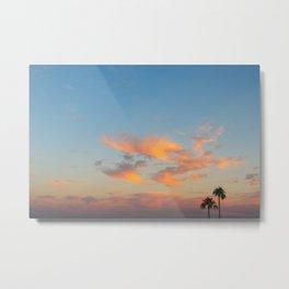 arizona palms Metal Print