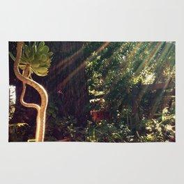 Sunshine on succulents Rug