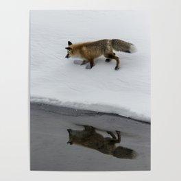 Carol M. Highsmith - Hunting Fox Poster