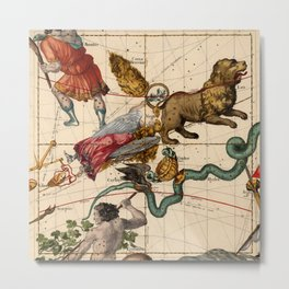 Constellation Chart 1693d Metal Print