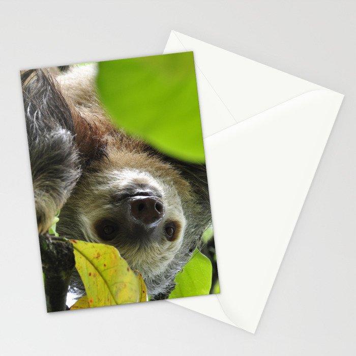 Sloth_20171105_by_JAMFoto Stationery Cards