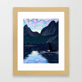 killer whales, lofoten islands Framed Art Print