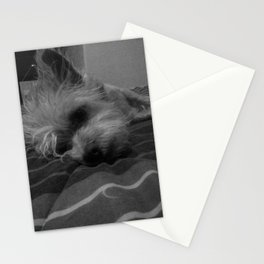 Dr. Chicken Parmesan DiPuppio Stationery Cards