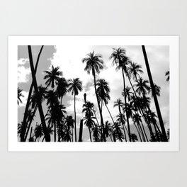 Tropical Darkroom #263 Art Print