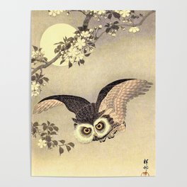Koson Ohara - Scops Owl in Flight, Cherry Blossoms and Full Moon - Japanese Vintage Woodblock Poster
