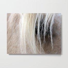 Palomino Mane and Eye Metal Print