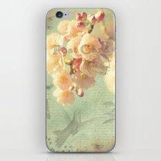 Postcard iPhone & iPod Skin
