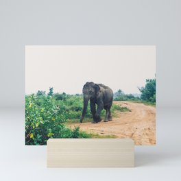 Elephant in Udawalawe National Park, Sri Lanka Mini Art Print
