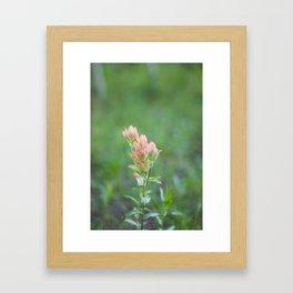 Pink Paintbrush Framed Art Print