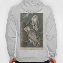 Vintage Illustration of Snowy Owls (1840) Hoody