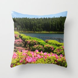 Lakes and azaleas Throw Pillow