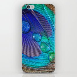 Peacock feather & water droplets iPhone Skin