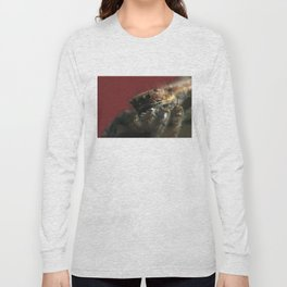 Spider on Red Long Sleeve T-shirt